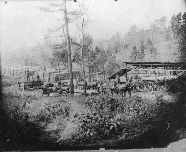 Darr sawmill (2)